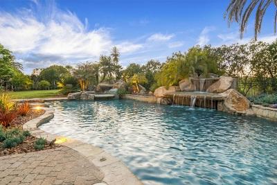 Rancho Santa Fe Single Family Home For Sale: 15876 The River Trail