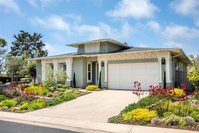 Encinitas Single Family Home For Sale: 606 Polaris Drive