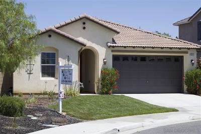 Temecula Single Family Home For Sale: 43223 Greene Circle