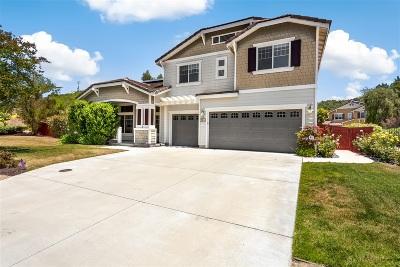 Escondido Single Family Home For Sale: 304 Hidden Trails Rd.