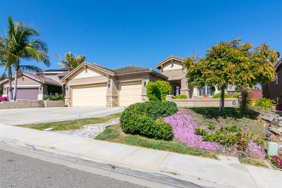 Single Family Home For Sale: 548 Big Sky