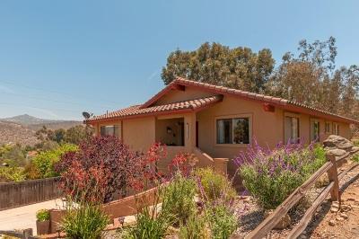 Escondido Single Family Home For Sale: 3215 Don Rolando