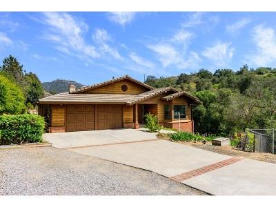Single Family Home For Sale: 20455 Fortuna Del Sur