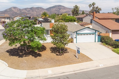 Single Family Home For Sale: 6869 Town View Lane