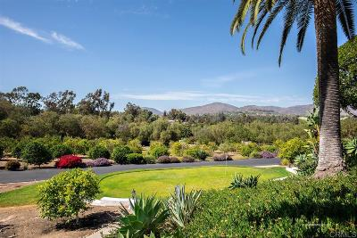 Rancho Santa Fe Single Family Home For Sale: 17207 El Vuelo