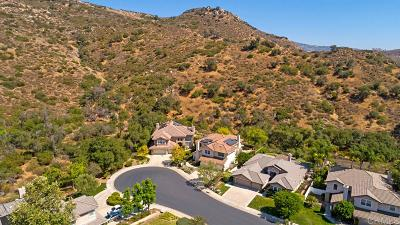 Escondido Single Family Home For Sale: 3273 Rosewood Lane