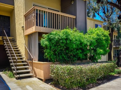 San Diego Attached For Sale: 6058 Rancho Mission Rd #418