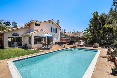 Single Family Home For Sale: 2328 Back Nine St