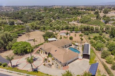 San Diego County Single Family Home For Sale: 3434 Via Zara