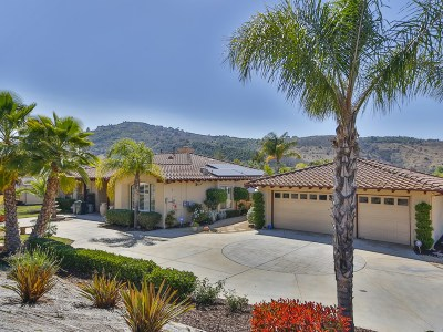 San Diego County Single Family Home For Sale: 3133 Larkwood Ct.