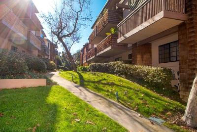 La Jolla Attached Pending: 8860 Villa La Jolla #317