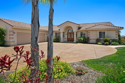 San Diego County Single Family Home For Sale: 2113 Summer Bloom Ln