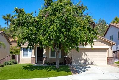 Oceanside Single Family Home For Sale: 947 Manteca