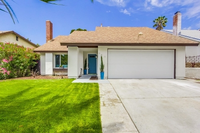 San Diego Single Family Home For Sale: 976 Dimarino St