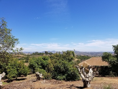 Bonsall Residential Lots & Land For Sale: Via Monte Alegre