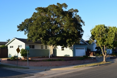 La Mesa Single Family Home For Sale: 9540 Lakeview Dr