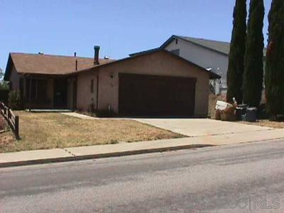 San Diego Single Family Home For Sale: 738 Beejay Dr