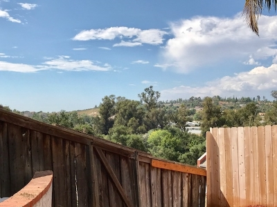 San Diego County Single Family Home For Sale: 1466 Ramsey