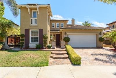 San Diego County Single Family Home For Sale: 322 Corte Goleta