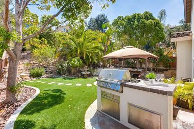 San Diego County Single Family Home For Sale: 1616 Sagewood Way