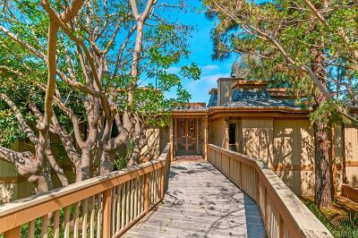 La Mesa Single Family Home For Sale: 4728 La Rueda Dr.