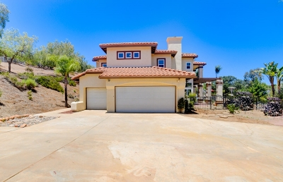 San Diego County Single Family Home For Sale: 1199 Hanover Pl