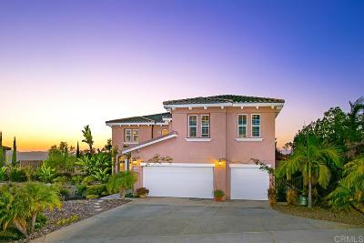 Oceanside Single Family Home For Sale: 1090 Straightaway Court