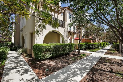 San Marcos Attached For Sale: 2078 Silverado St