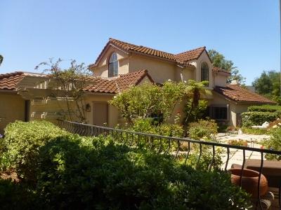 Vista Single Family Home For Sale: 29184 Vista Valley Dr.