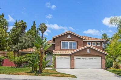 Oceanside Single Family Home For Sale: 1197 Sunbright Dr