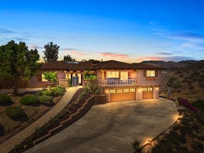 Vista Single Family Home For Sale: 3088 Protea Vista Ter
