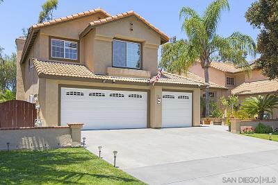San Marcos Single Family Home For Sale: 722 Avenida Abeja