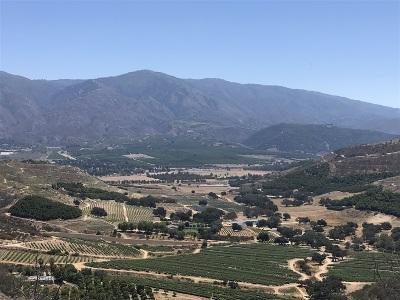 Valley Center Residential Lots & Land For Sale: Vista Del Sage #13404