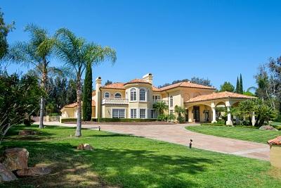 Rancho Santa Fe Single Family Home For Sale: 17472 Circa Del Sur