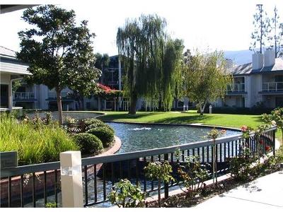San Marcos Attached For Sale: 1616 Circa Del Lago #C108