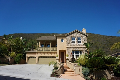 San Marcos Single Family Home For Sale: 1010 Skyline Pl.