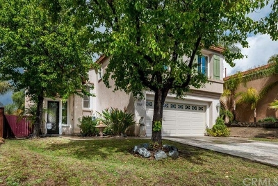 Temecula Single Family Home For Sale: 32865 Verona Ct