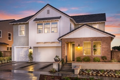 Chula Vista Single Family Home For Sale: 1087 Camino Cantera