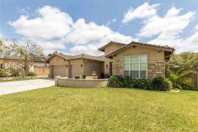 Vista Single Family Home For Sale: 275 Amelia Ct.