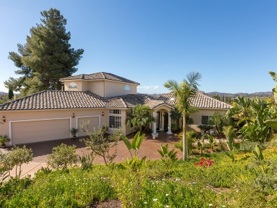 Escondido Single Family Home For Sale: 2401 Haas St