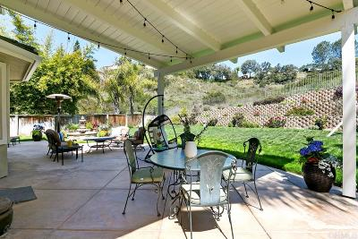 Encinitas Single Family Home For Sale: 3735 Sage Canyon Dr