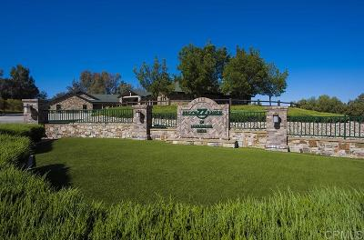 San Diego County Single Family Home For Sale: 730 Saddlebrook Dr