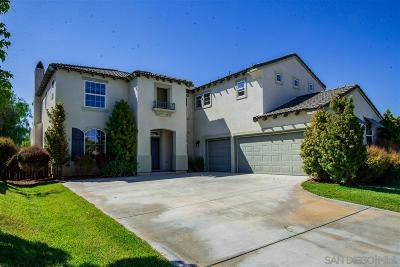 Murrieta, Temecula Single Family Home For Sale: 34063 Milat St