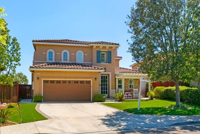 San Marcos Single Family Home For Sale: 1512 Clifftop Ave.