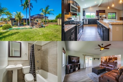 Vista Single Family Home For Sale: 1476 Planet Rd