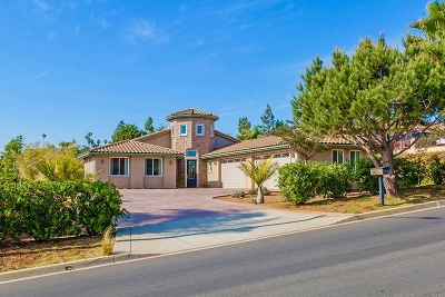 Vista Single Family Home For Sale: 2377 Warmlands Ave