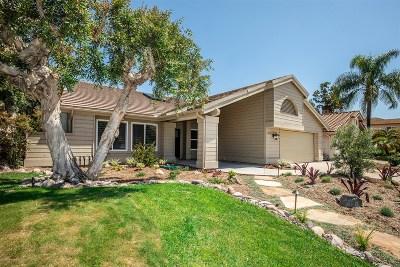 Rancho Santa Fe Single Family Home For Sale: 3806 Avenida Feliz