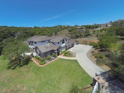Fallbrook Single Family Home For Sale: 3418 Country Rd