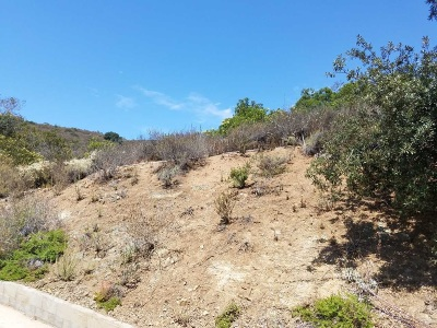 San Marcos Residential Lots & Land For Sale: Del Roy Dr. #1