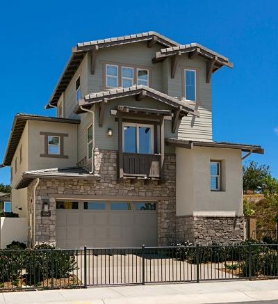 Carlsbad Single Family Home For Sale: 3062 Villeta Ave #Lot 16